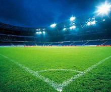 Import of lawn grass and tractors to cover sports stadium